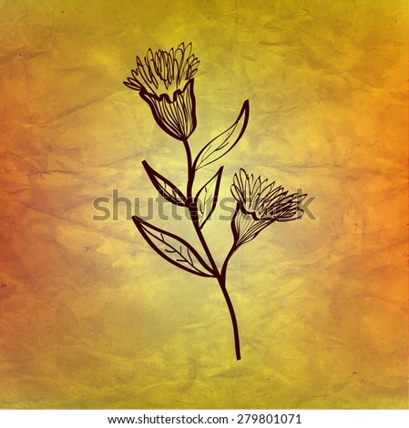 Thistle flower on aged paper texture, vector.  - stock vector