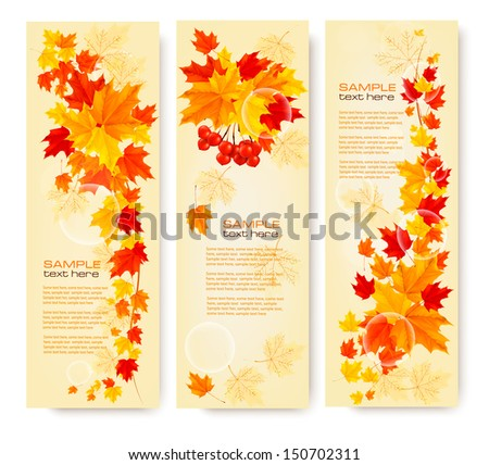 Three autumn backgrounds with colorful leaves. Back to school. Vector illustration