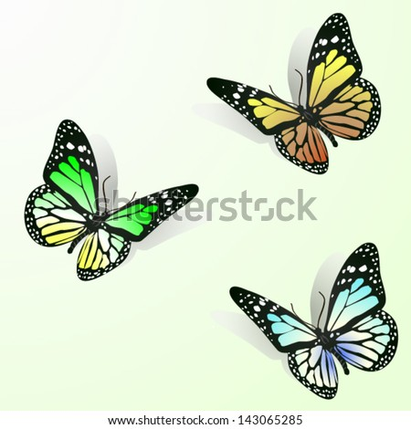 Three colorful butterflies - stock vector