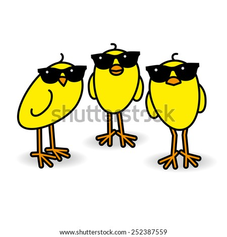 Three Cool Yellow Chicks wearing Sunglasses Staring towards camera on White Background - stock vector