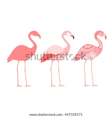 Three flamingos, isolated vector illustration - stock vector