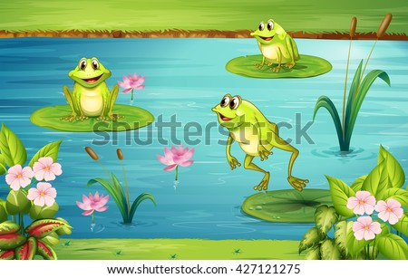 Three frogs living in the pond illustration - stock vector