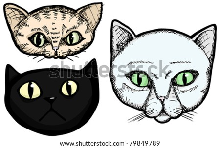 Three hand-drawn cat head portrait illustrations isolated on a white background - stock vector