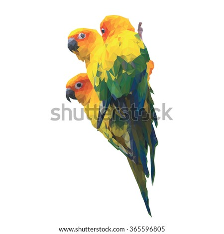 Three low poly Sun Conure parrots. Colorful isolated vector