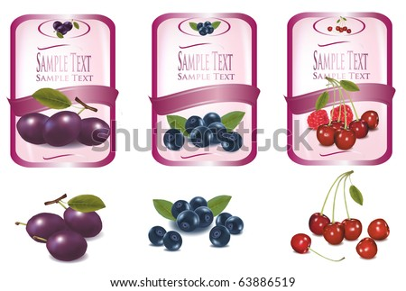 Three pink labels with different sorts of fruit. Vector. - stock vector