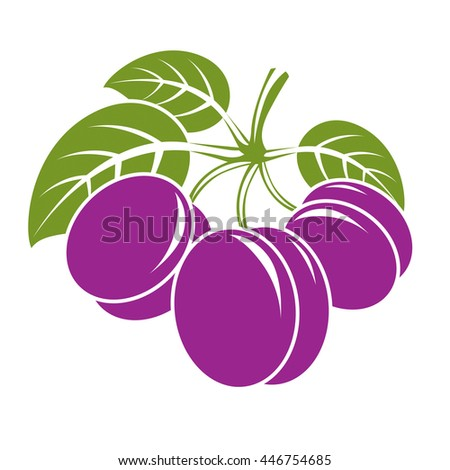 Three purple simple vector plums with green leaves, ripe sweet fruits illustration. Healthy and organic food, harvest season symbol.  - stock vector