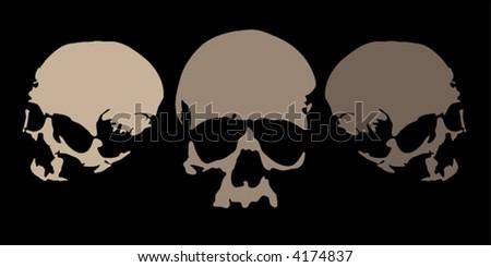 three scaleable vector illustrations of skulls - stock vector