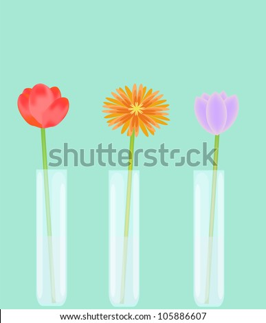Three Single Flowers Vases Water Stock Vector 105886607 Shutterstock