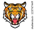Tiger anger. Vector illustration of a tiger head. - stock
