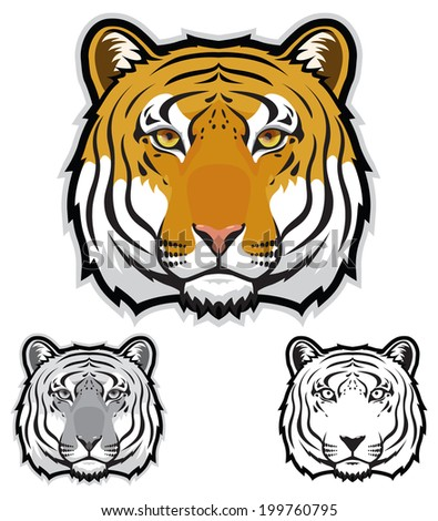 Tiger Faces - stock vector