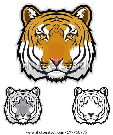 Tiger Faces - stock vector