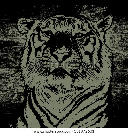 tiger head and grunge scratched background. vector illustration. - stock vector