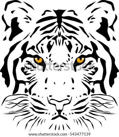 Tiger head, vector illustration