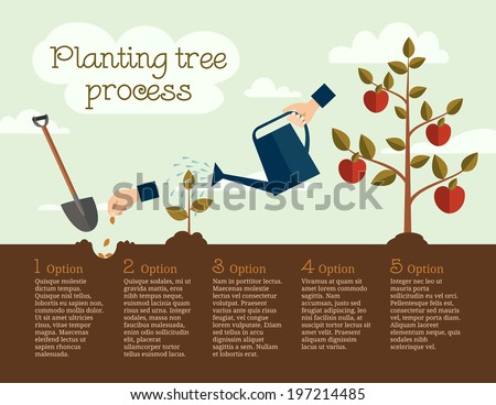 Timeline infographic of planting tree process, business concept flat design - stock vector