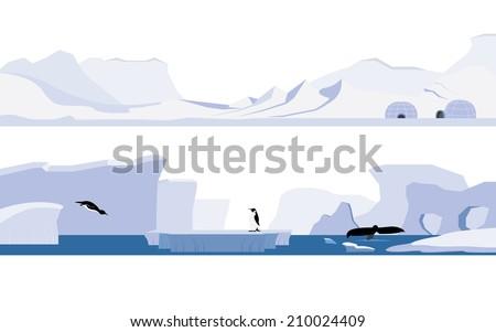 Title: Arctic and Antarctica Description: Set of arctic and antarctica - stock vector