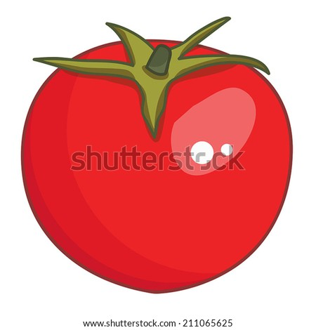 tomato isolated illustration on white background - stock vector