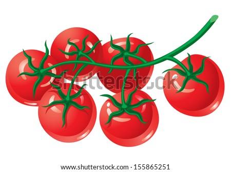 Tomato Isolated Stock Vectors & Vector Clip Art | Shutterstock