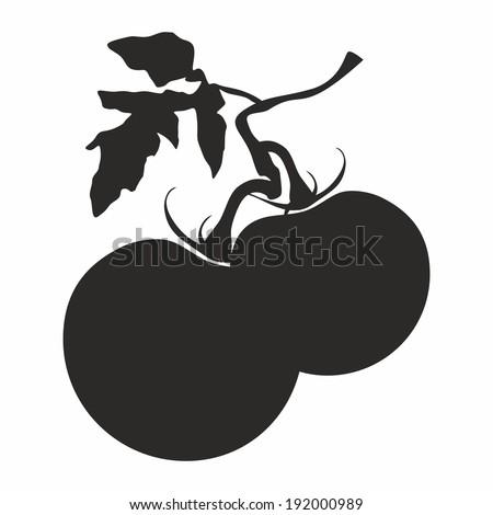 Tomatoes vector illustration - stock vector