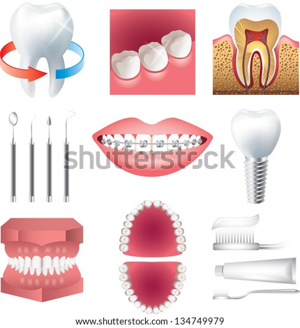 tooth healthcare and stomatology photo-realistic vector set - stock vector