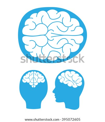 Top, back and left views of the human brain. Vector illustration. - stock vector