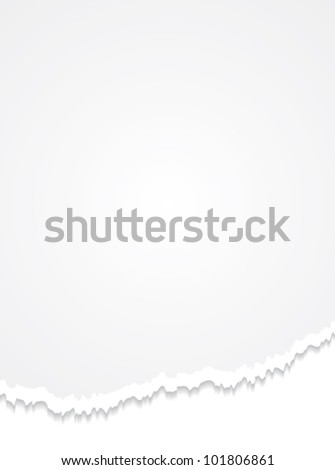 Torn paper. Realistic commercial vertical vector background. - stock vector
