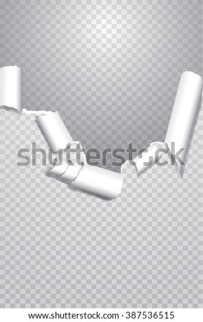 torn paper with transparent shadows, editable and layered - stock vector