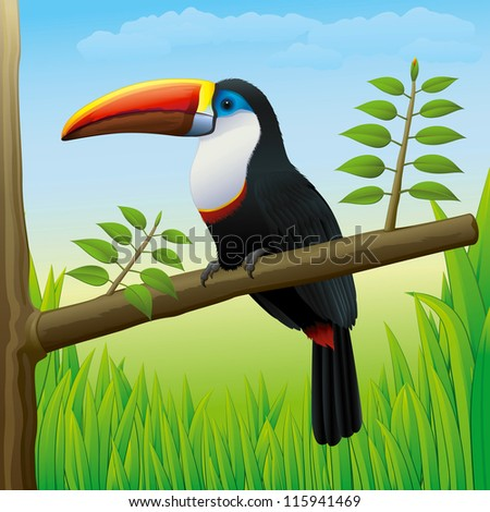 Toucan Bird Sitting on a Tree in Nature - High detailed Vector Gradients - stock vector