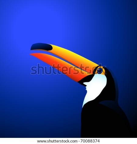 toucan illustration - stock vector