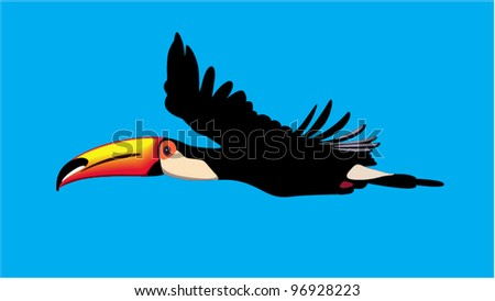 toucan parrot in flight against a blue background - stock vector
