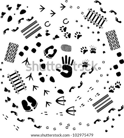 Traces - stock vector