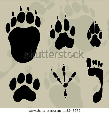 tracks of animals - stock vector
