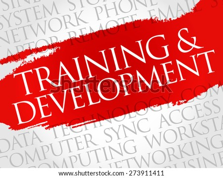 Training and Development word cloud concept - stock vector