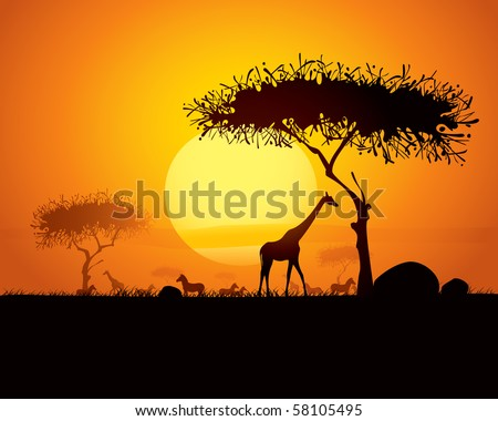 Tranquil sunset scene in africa.  Silhouette animals and trees in africa sunset background. - stock vector