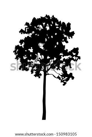 tree, black silhouette on white background. Vector - stock vector