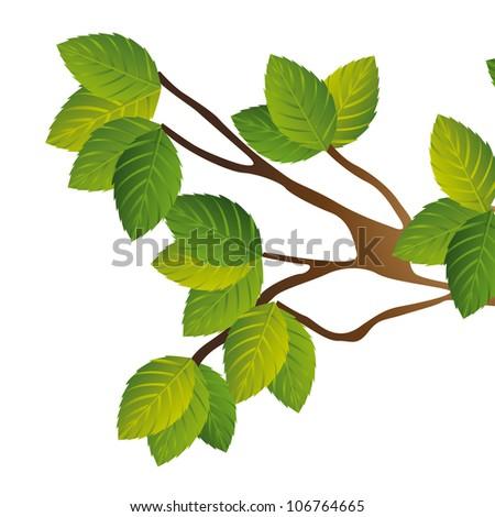 tree branch over white background. vector illustration - stock vector