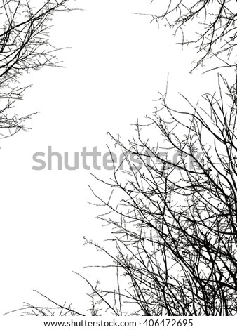 Tree branch silhouette on a white background. - stock vector