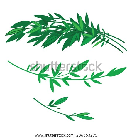 Tree branches with green leaves - nature - stock vector