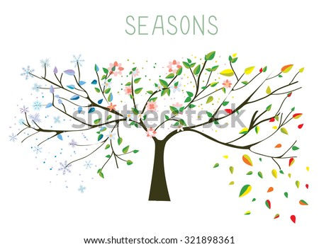 Tree during four seasons concept - vector illustration - stock vector