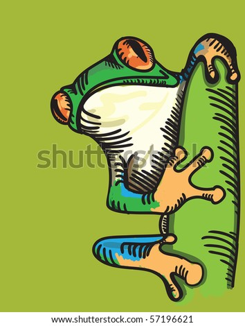 tree frog - stock vector