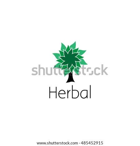 Stock Photos RoyaltyFree Images Vectors Shutterstock – Editable Leaf Template