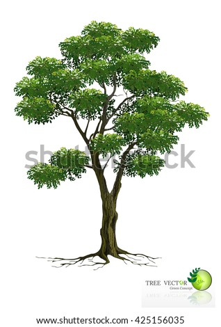tree on white background,Tree Branch Silhouettes,Tree branch with green leaves over white background - stock vector