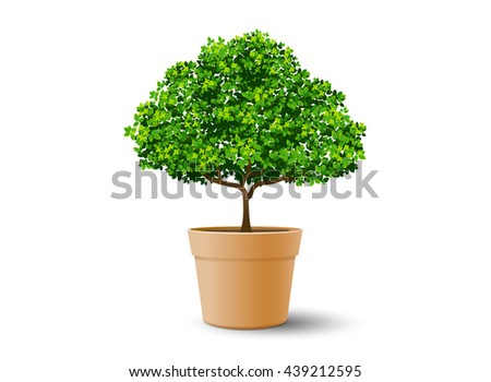 tree plant in the pot,tree and leaf,realistic tree,tree vector,bonsai