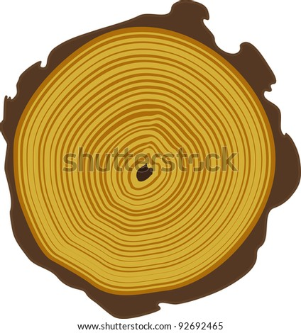 tree rings - stock vector