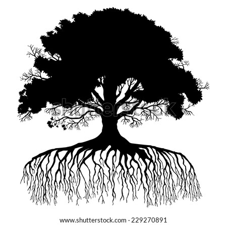tree silhouette - stock vector