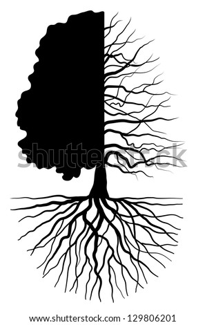 Tree silhouette concept symbolizing the seasons - stock vector