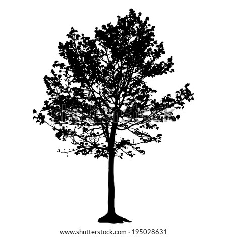 Tree Silhouette Isolated on White Backgorund. Vecrtor Illustration - stock vector