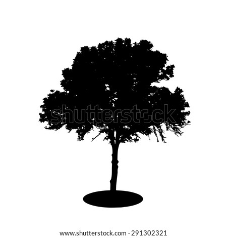 Tree Silhouette Isolated on White Backgorund. Vecrtor Illustration. EPS10 - stock vector