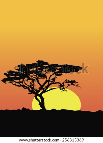 Tree silhouette on sunset - stock vector