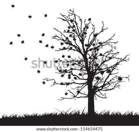 tree silhouette with fallen leaves - stock vector