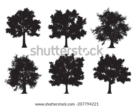 Tree silhouettes - stock vector